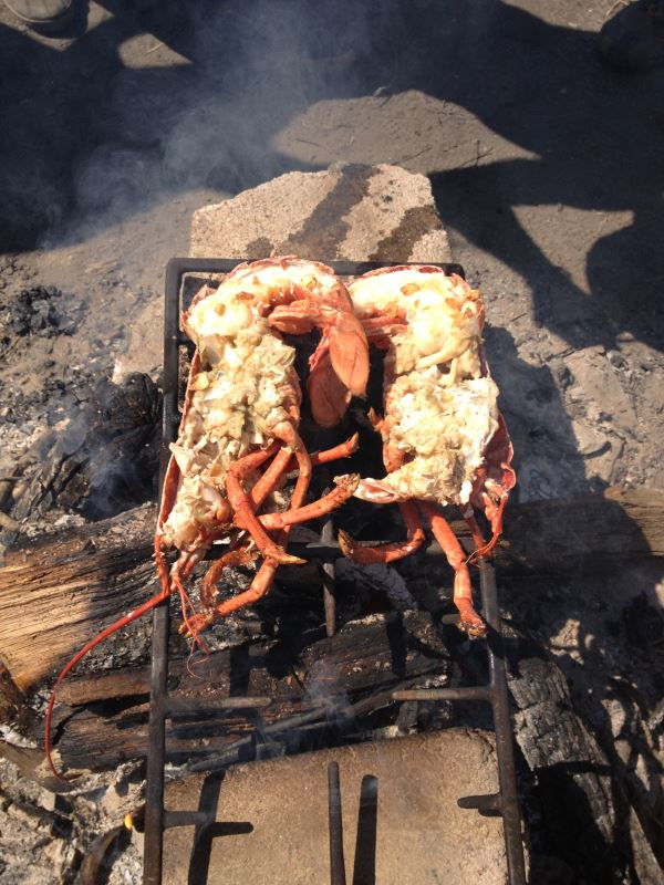 Lobster roasted on the fire. We know how to feed people at 7th Rise!