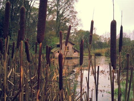 la-cabane-flottante