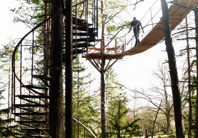 tree-house-holiday-sweden