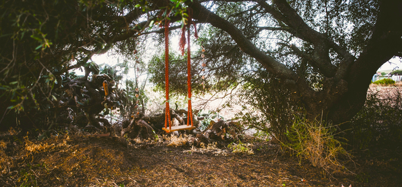 hq-outside-swing-on-tree_cs_gallery_preview