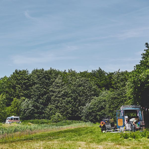 camping_het_bos_roept09__large-1