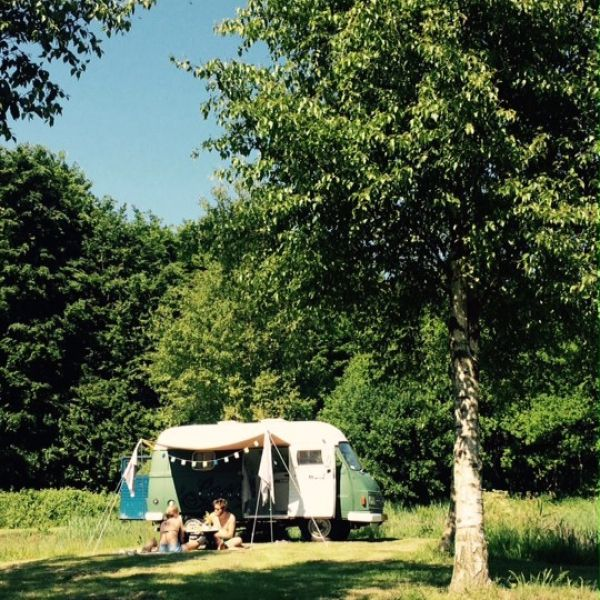 camping_het_bos_roept15__large-1