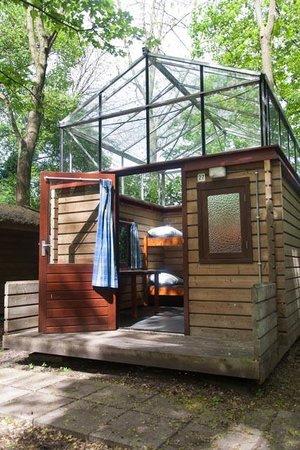 art-cabin-project