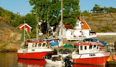 DSC_0024 Hvaler, Norway, Foto: Hanne Siebers
