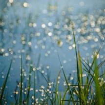 shine_water_3