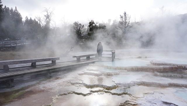 Mammoth Hot Springs Terraces