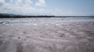 Glistening water at four mile beach at port douglas