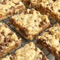 Oatmeal chocolate chip peanut butter bars are a family favorite dessert that everyone loves. Soft cookie bars loaded with oatmeal, peanut butter, peanut butter chips, and chocolate chips. These are a peanut butter & chocolate lovers dream and they come together quickly.