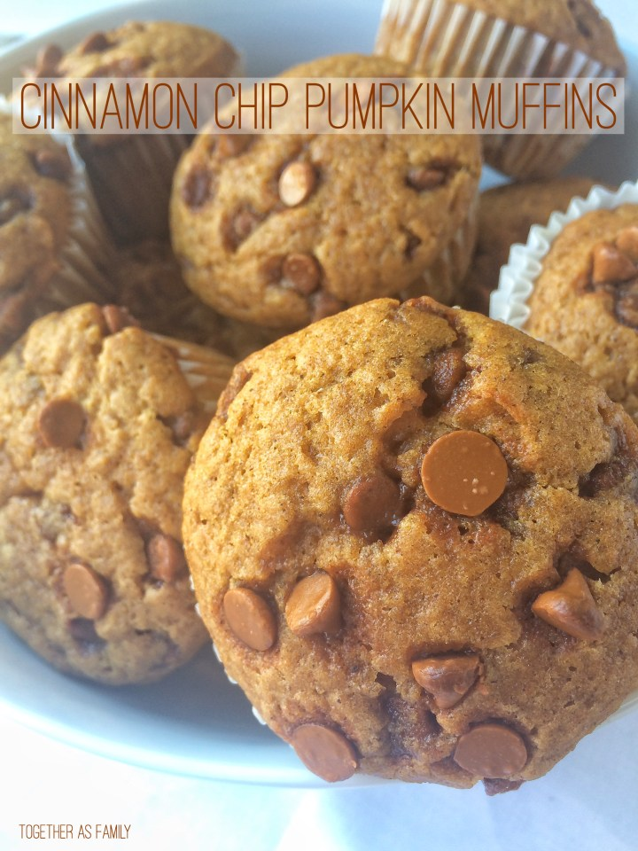 CINNAMON CHIP PUMPKIN MUFFINS | www.togetherasfamily.com