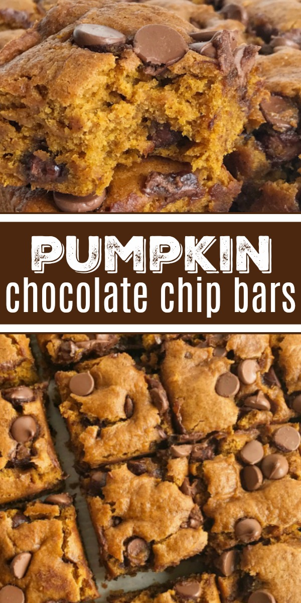 Pumpkin Chocolate Chip Bars | Pumpkin Bars | Pumpkin Recipe | Pumpkin Dessert | Pumpkin chocolate chip bars are super soft-baked, cake-like, moist and loaded with milk chocolate chips. This recipe uses an entire can of pumpkin so there will no wondering what to do with the leftovers. #pumpkinbars #pumpkinrecipe #dessert #chocolate #pumpkin