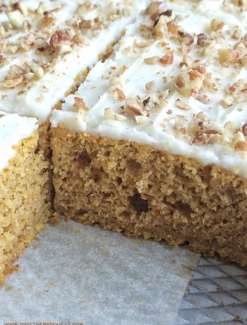 Pumpkin Spice Sheet Cake is full of pumpkin and warm fall spices. Soft, moist, and topped with the best cream cheese frosting and sprinkled with chopped pecans. Perfect dessert for Thanksgiving or anytime in the Fall.