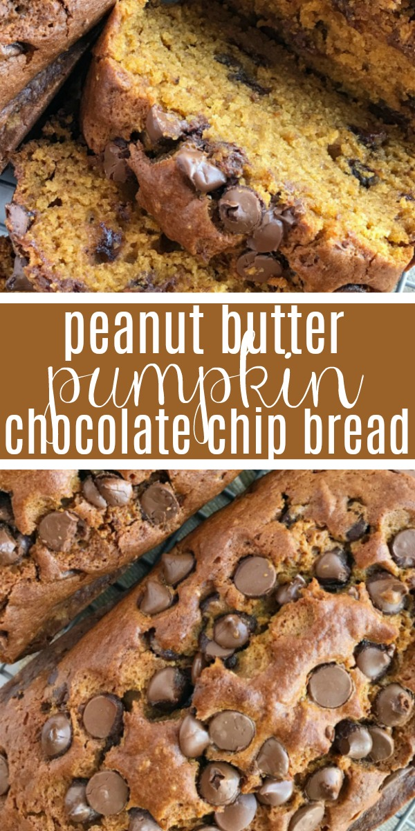 Peanut Butter Pumpkin Chocolate Chip Bread | Pumpkin Bread Recipe | Pumpkin | Peanut butter pumpkin chocolate chip bread is like traditional pumpkin bread but with a peanut butter twist, and dotted with milk chocolate chips. Soft, moist, flavorful, and so delicious! #pumpkin #pumpkinrecipes #chocolate #fallrecipes #bread #pumpkinspice #recipeoftheday