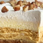 Pumpkin Cheesecake Layered Pudding Dessert | Pumpkin Dessert | Pumpkin Cheesecake | Pumpkin cheesecake pudding dessert is a layered dessert made in a 9x13 baking dish. Cinnamon cracker crust, topped with a creamy pumpkin cheesecake, fluffy vanilla pudding, and Cool Whip. Garnish with pecans for the best pumpkin dessert this Fall. #pumpkin #pumpkinrecipe #pumpkincheesecake #cheesecake #dessertrecipe #fallrecipe #pumpkinspice