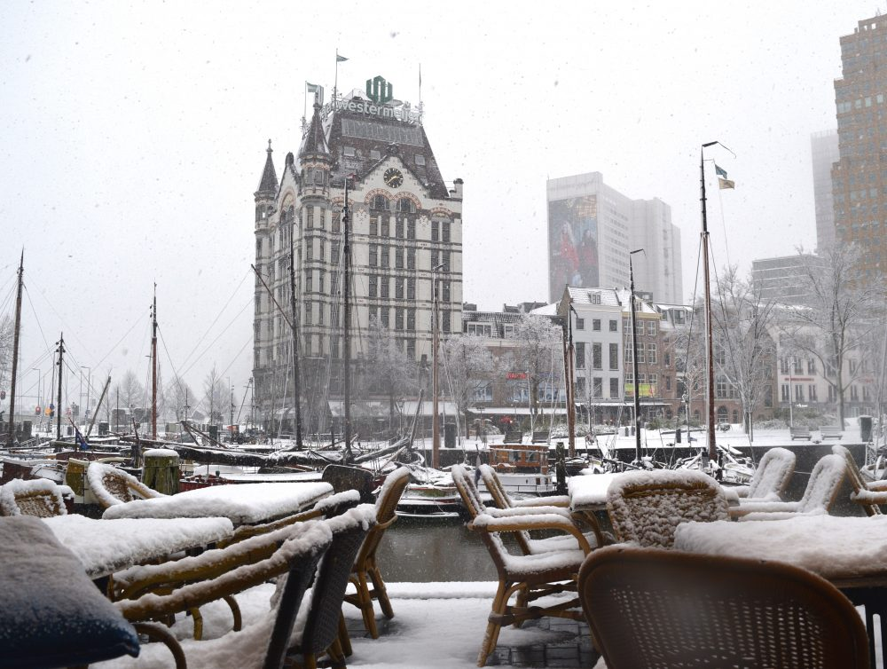 Snow during winter in Rotterdam