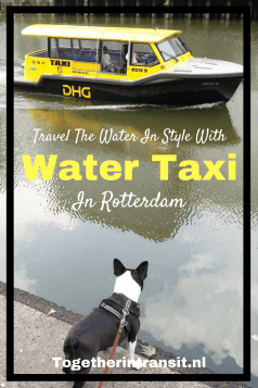 Take the Water Taxi in Rotterdam to get around, the coolest way across the water! #rotterdam #travel #netherlands