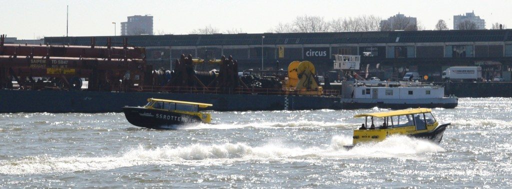 Water Taxi in Rotterdam togetherintransit.nl 2