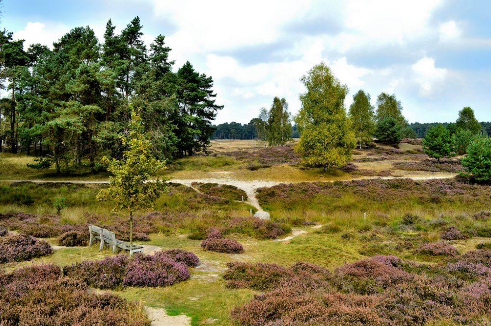 National Parks of the Netherlands - Utrechtse Heuvelrug