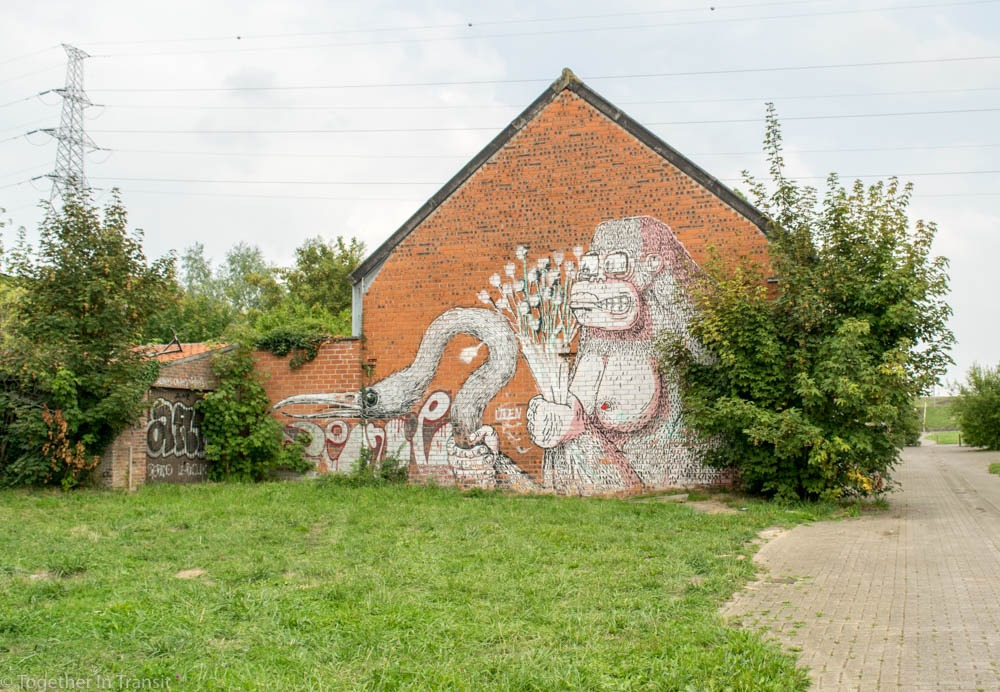 Monkey graffiti at the Abandoned Ghost Town Doel in Belgium