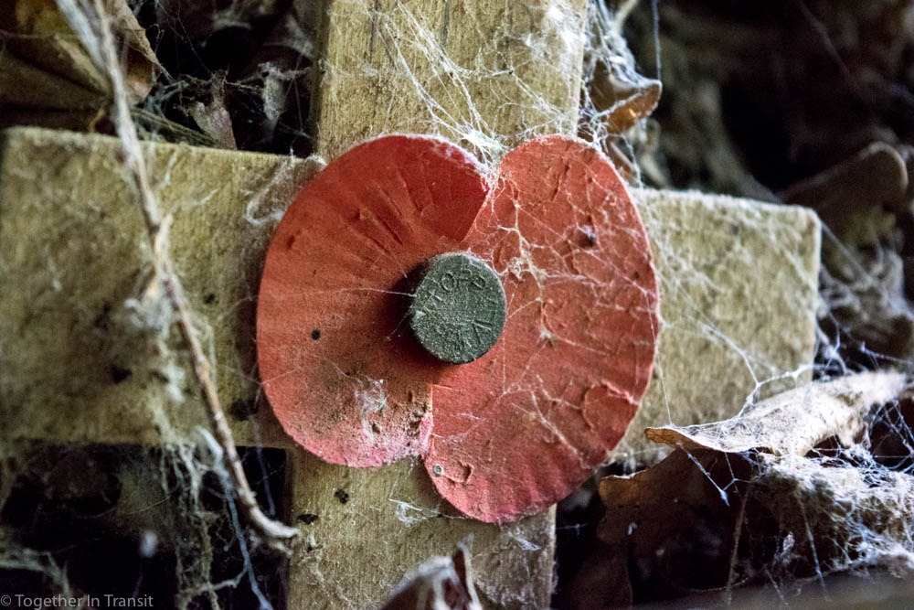 A poppy remembrance cross with cobwebs on at Hill 60.