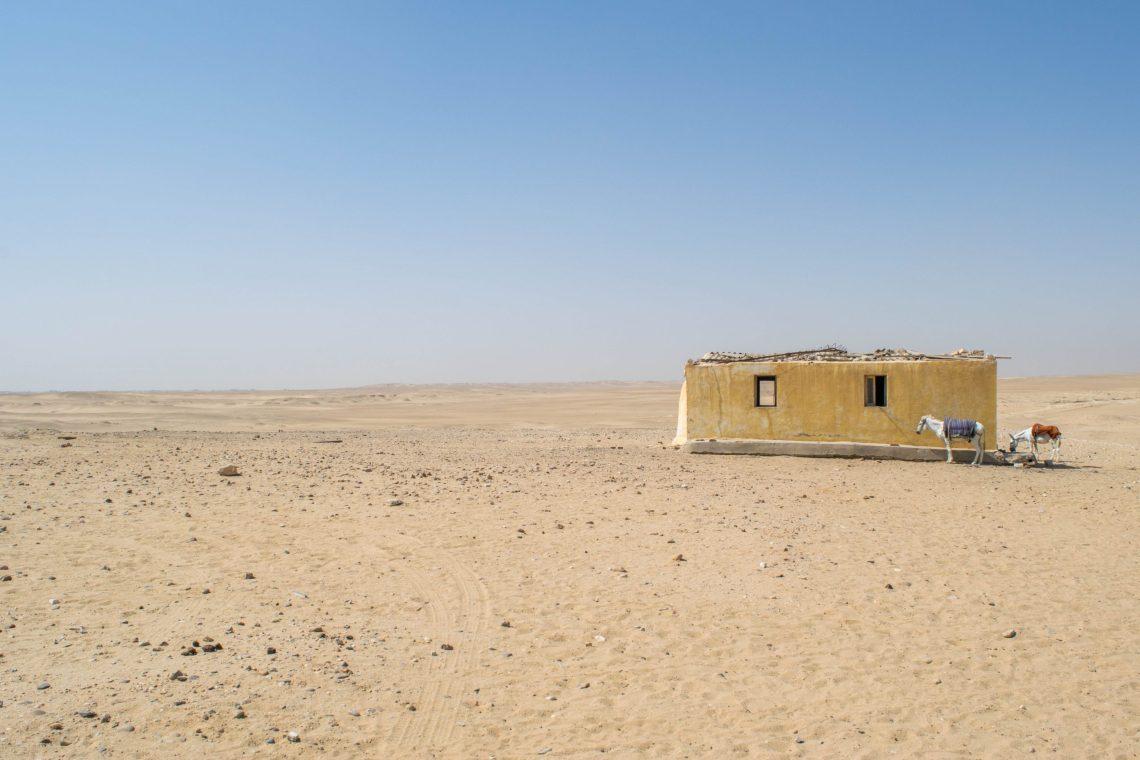 This photo is of the desert close to Saqqara pyramids togetherintransit.nl