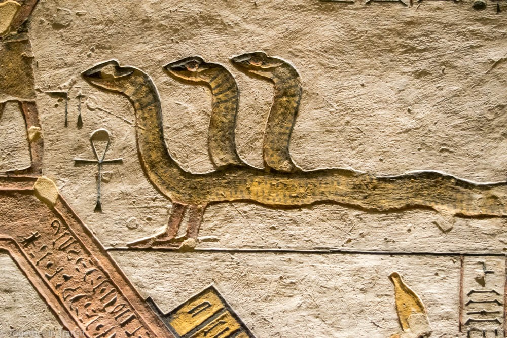 Valley Of The Kings - Ramesses IX KV6 the 9th inside the tomb in 2018 showing a three headed snake