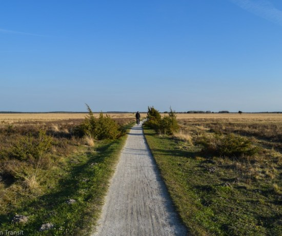 Weekend Getaway Ideas In The Netherlands - National Parks in the Netherlands