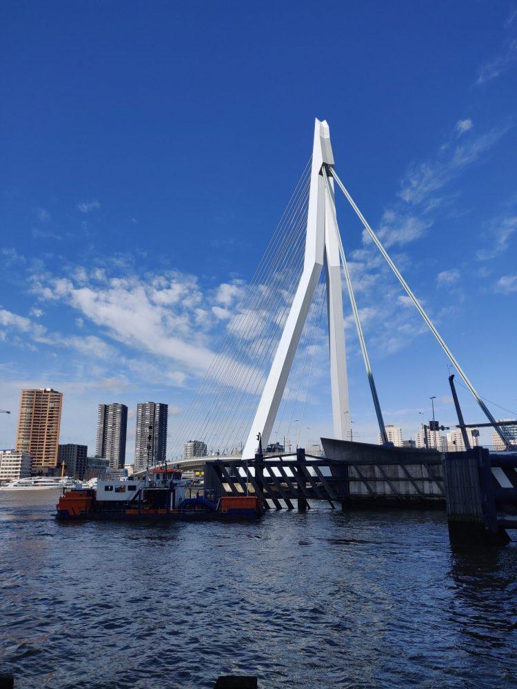 Spring in Rotterdam togetherintransit.nl