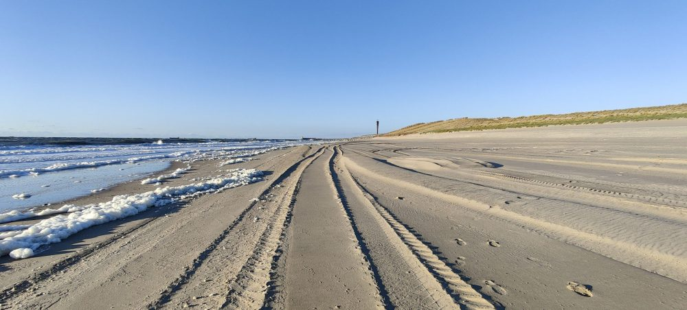 Tractor trails in the beach sand