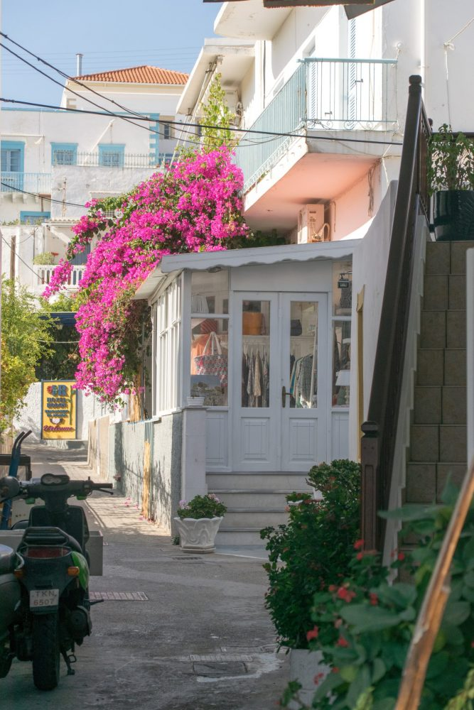 Pretty alleyway with pink flowers