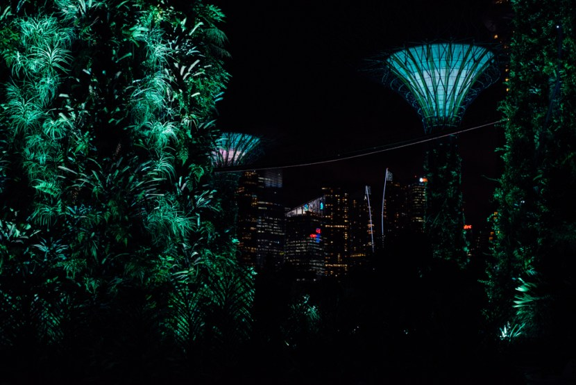 singapore-supertree-garden-4