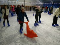 Seal Aid Ice Skating