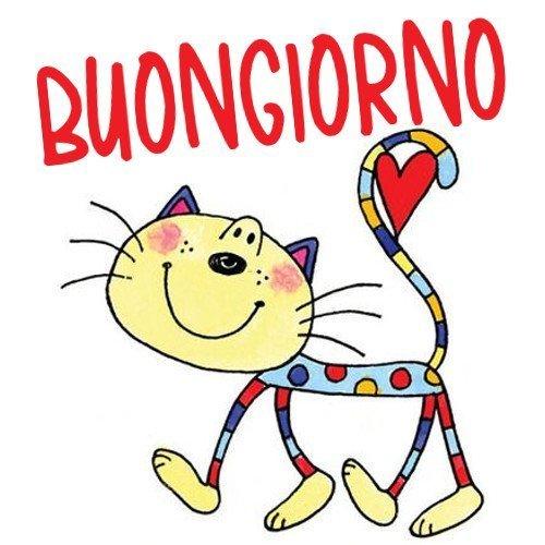 Buongiorno Gatto