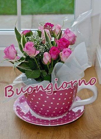 Buongiorno fiori