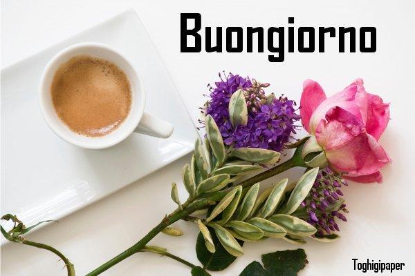 Buongiorno fiori Buongiorno caffè nuove immagini gratis per Facebook e WhatsApp