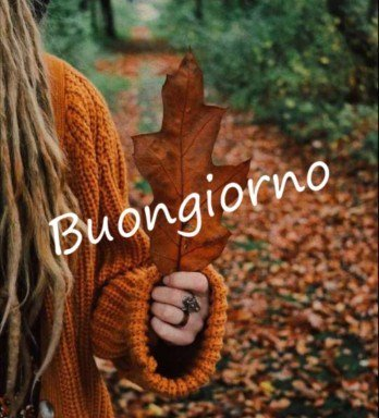Buongiorno autunno immagini nuove e belle da scaricare gratis