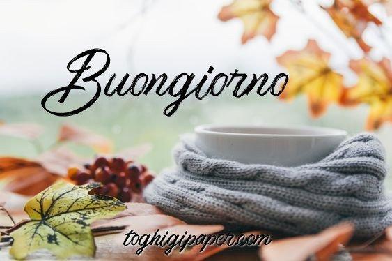 Buongiorno autunno nuove e belle immagini gratis WhatsApp