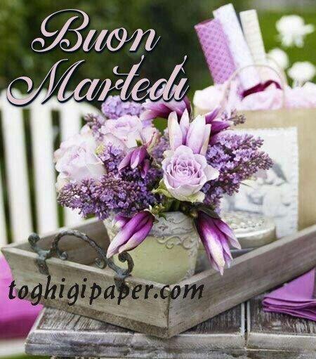 Martedì buongiorno immagini nuove e bellissime da scaricare gratis per Facebook, WhatsApp, Pinterest, Instagram, Twitter