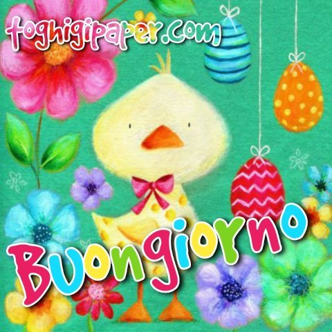 Primavera pasqua buongiorno nuove immagini gratis WhatsApp, Facebook, Instagram, Pinterest, Twitter