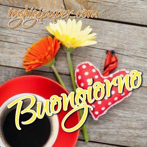 Fiori caffè buongiorno nuove e belle immagini gratis per WhatsApp, Facebook, Pinterest, Instagram, Twitter