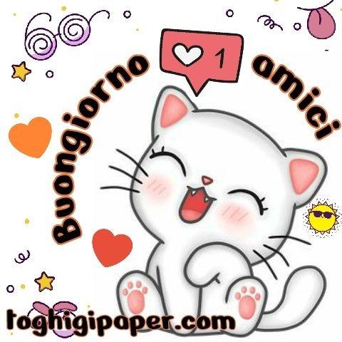 Amici buongiorno gattino nuove e belle immagini gratis per WhatsApp, Facebook, Pinterest, Instagram, Twitter