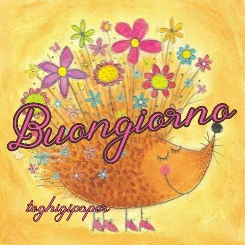 Fiori autunno buongiorno nuove e belle immagini gratis per WhatsApp, Facebook, Pinterest, Instagram, Twitter