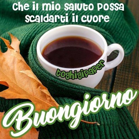 Caffè autunno buongiorno frase nuove immagini gratis WhatsApp, Facebook, Instagram, Pinterest, Twitter
