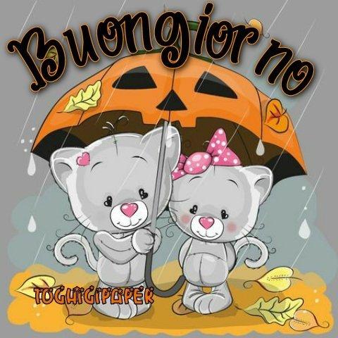 Halloween buongiorno immagini nuove gratis WhatsApp Facebook Instagram Pinterest