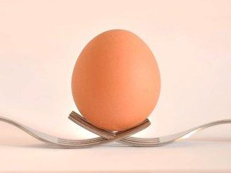 poster article1611498305 Lomé: le prix du plateau d'œuf flambe, les raisons