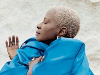 angelique Kidjo e1624103724663 Angélique Kidjo et sa « Mother nature »