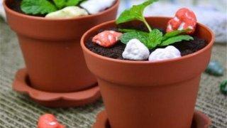 中国の露店で販売している鉢植えは土ごと食べられます!