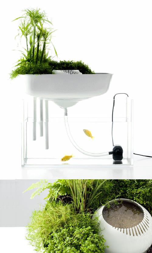 floating garden/ benjamingraindorge