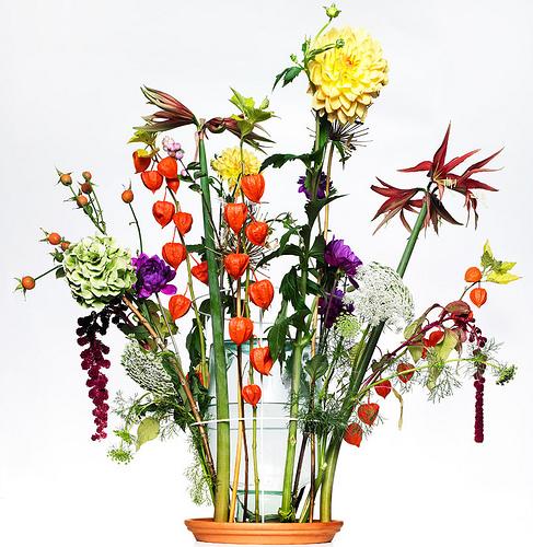 hidden vases/ chris kabel