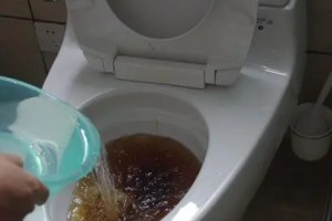 Unclog toilet with dishwashing liquid