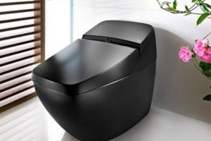 black toilet seat